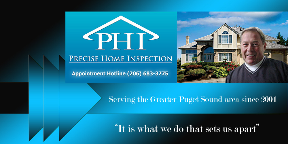 Precise Home Inspection